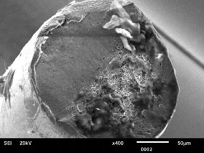 MEB Rupture en fatigue d'un fil de flexible en inox